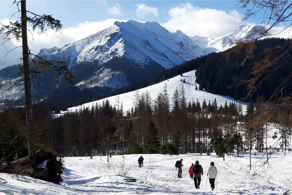 zimowe atrakcje w zakopanem